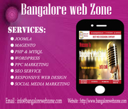 Bangalore Web Zone-website Design Company  Bangalore
