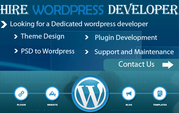 Need Exp. Wordpress/PHP Developer